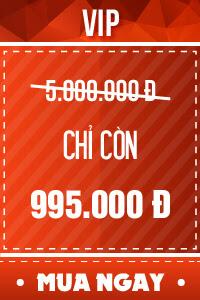 Vé VIP - 795,000 đ